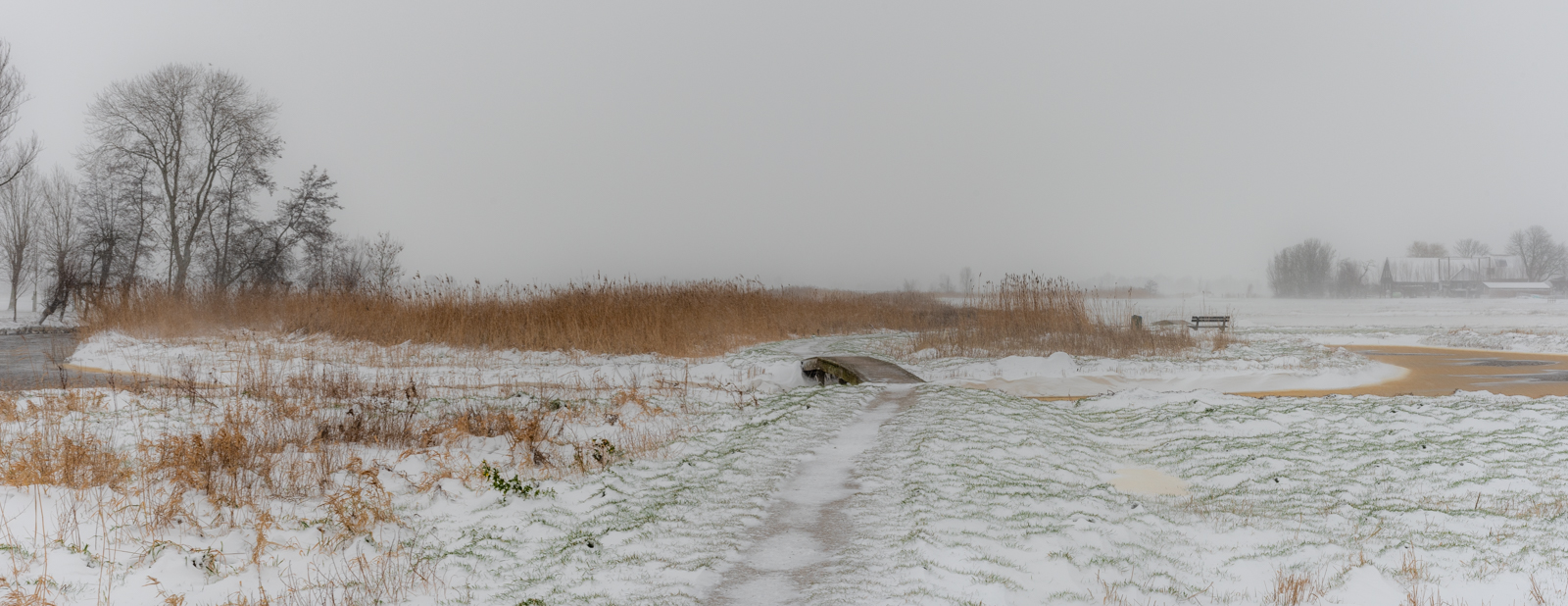 Midden Delfland _6262