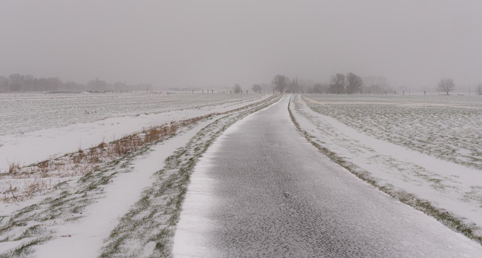 Midden Delfland _6269