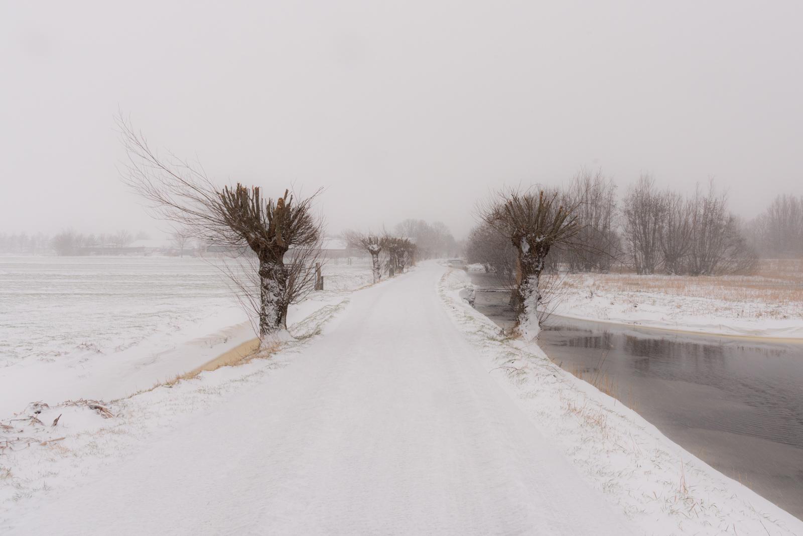 Midden Delfland / Gallery / Natuur /Sneeuw in Midden Delfland
