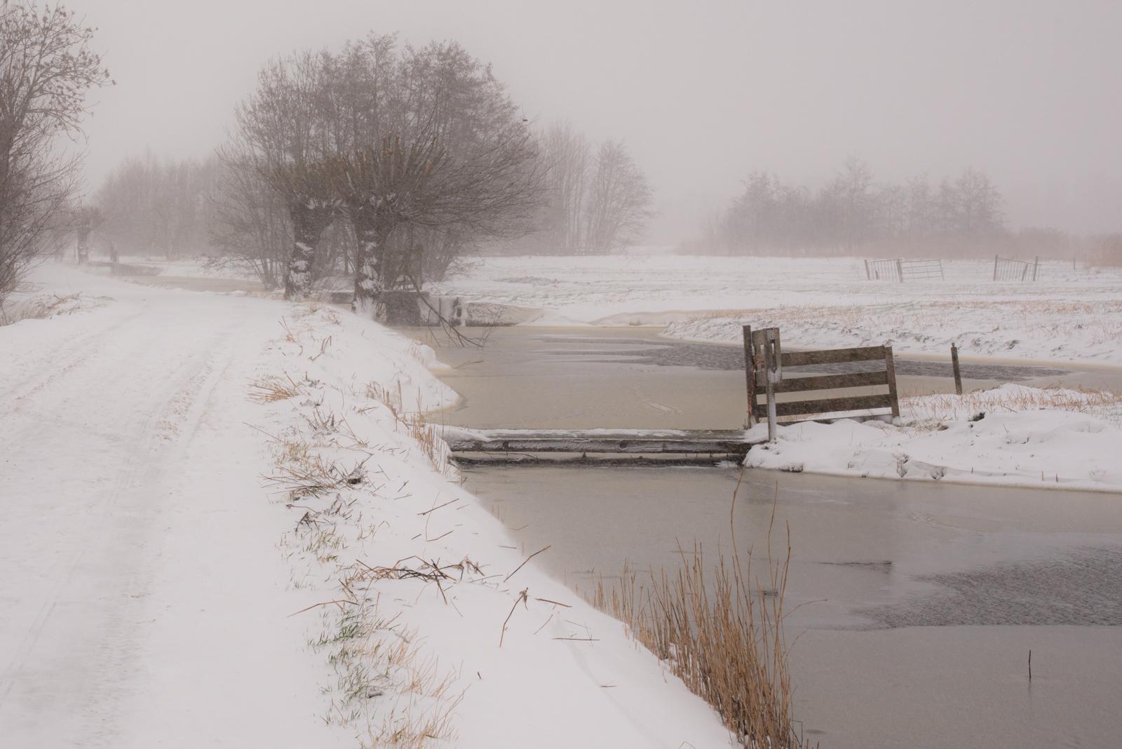 Midden Delfland _6296