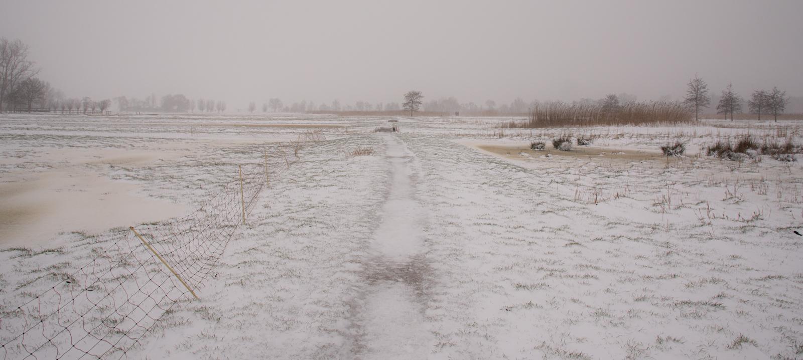 Midden Delfland  _6304